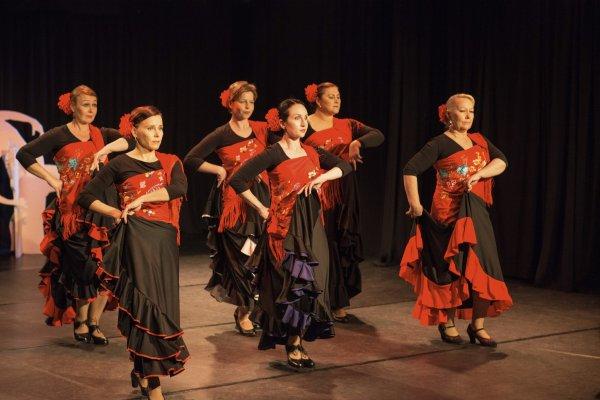 Jyväskylän Flamencoyhdistys