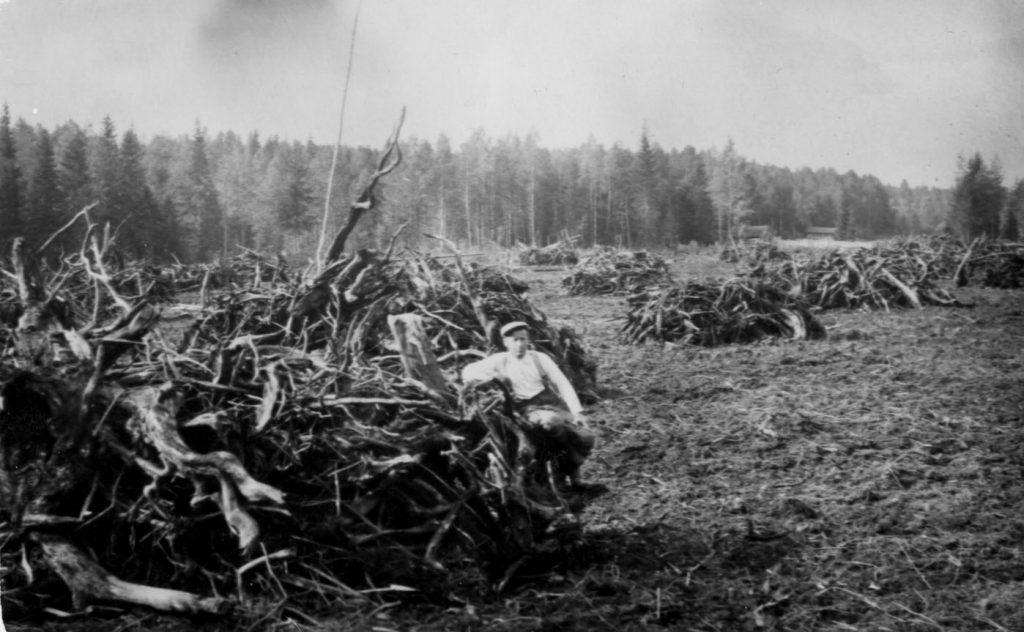 Aaro Lehtonen on aloittanut pellonraivuun Ylä-Sydänmaalla, Halla ahon mailla Päiväkunnassa  Korpilahdella.  -Taimi Lehtosen kokoelmat.